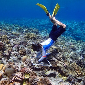 Oceanic Society Ulithi Atoll Reef Research
