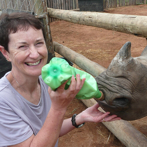African Conservation volunteer feeding baby rhino