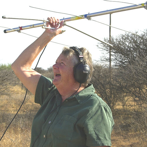 Biosphere Expeditions volunteer doing radio signal tracking