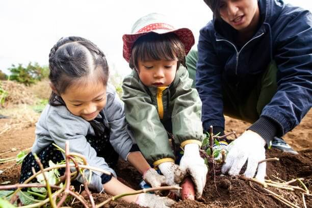 photo of an adult and two children tending to a food crop